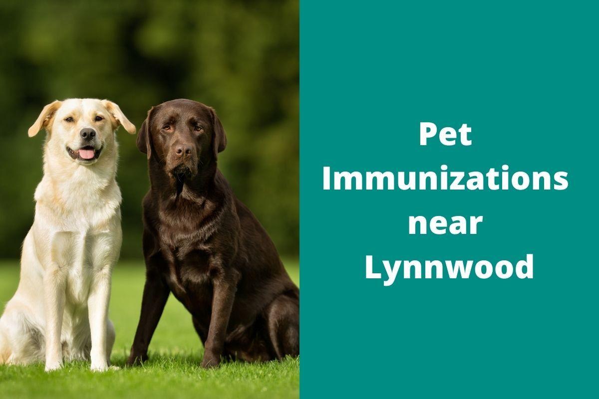 Pet-Immunizations-near-Lynnwood