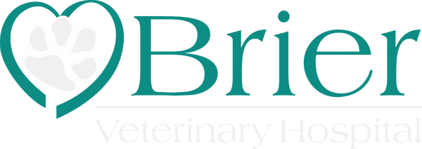 Brier Veterinary Hospital